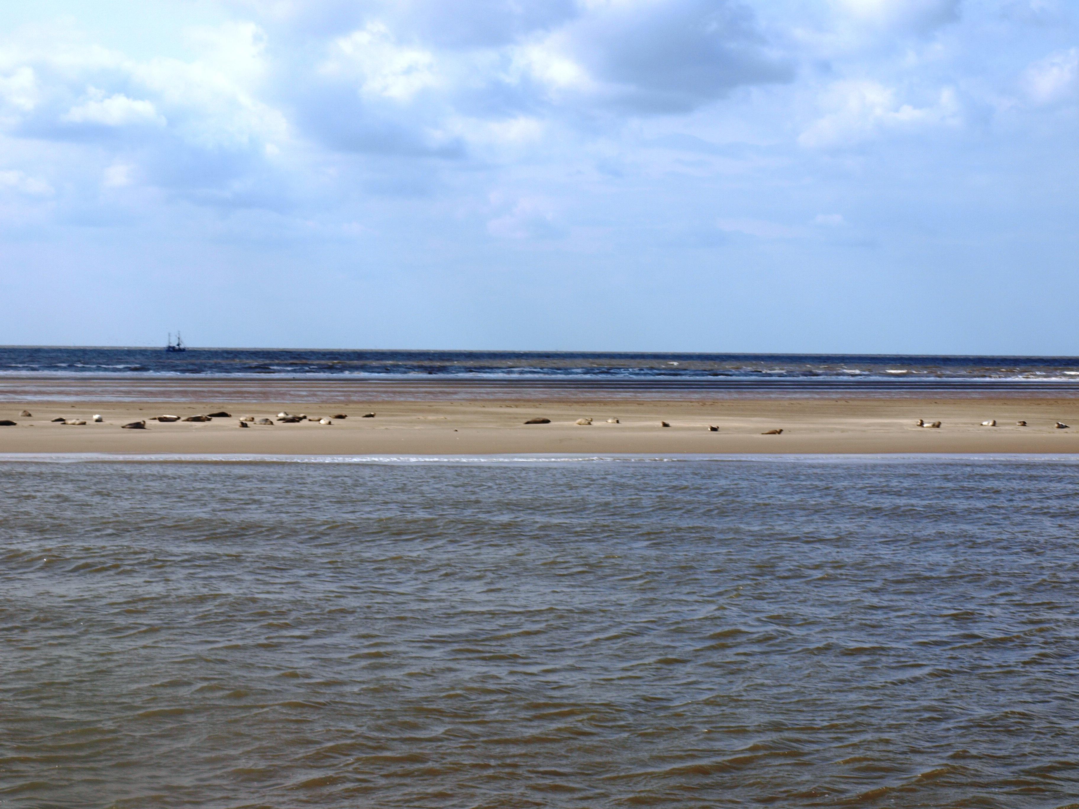 Reisebericht: Nordsee – Büsum – Helgoland – Schauwerte
